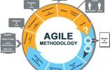 Проектное управление. Agile-предприятие.